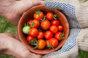 8 Vegetables Every Heirloom Grower Must Have In Their Garden
