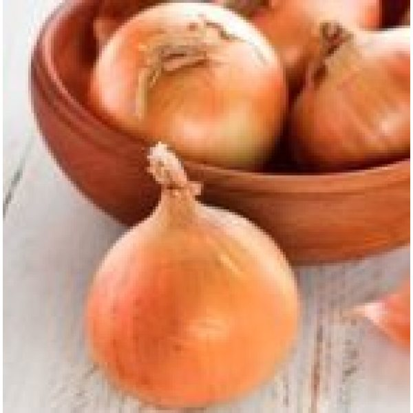 Isla's Garden Seeds Heirloom Seed 3 Texas Early Grano Onions Seeds, 300+ Premium Heirloom Seeds, Fantastic Addition to Your Home Garden! Sweet Spanish Flavor! (Isla's Garden Seeds), Non GMO, 85-90% Germination Rates, Highest Quality