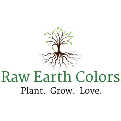 Raw Earth Colors  4 Lettuce Mix Seeds for Planting - Hydroponics - 500 Heirloom Seeds Variety Packet!