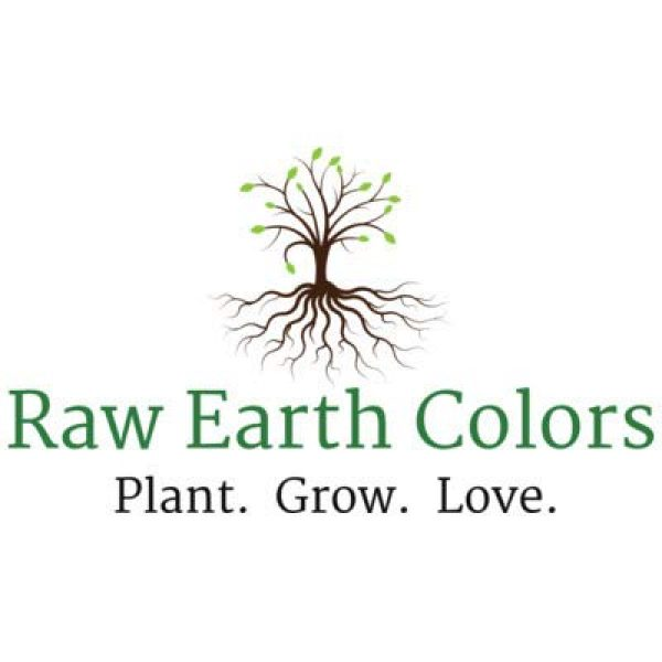 Raw Earth Colors Organic Seed 4 Daikon Radish Seeds for Planting - Sprouting - Organic Microgreens - Fast Growing 500 Daikon Vegetable Seeds.