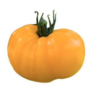 Marde Ross & Company Organic Seed 1 Organic Yellow Azoychka Tomato Seeds - Heirloom Large Tomato - One of The Most Delicious Tomatoes for Home Growing, Non GMO - Neonicotinoid-Free.