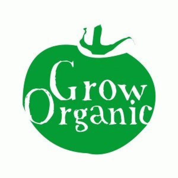 Dirt Goddess Super Seeds Organic Seed 5 Bulk Organic Kentucky Wonder Pole Beans (1/2 Lb)