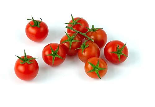 Fertile Ukraine Seeds  5 Seeds Cherry Tomato Red Early Vegetable Heirloom Ukraine