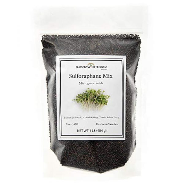 Rainbow Heirloom Seed Co. Heirloom Seed 1 Sulforaphane MICROGREEN Seed Mix | Perfect for Microgreen Growing Trays | Kale, Cabbage, Turnip & Broccoli Sprouting Seeds | Non GMO Heirloom Seeds | 1 LB Resealable Bag | Rainbow Heirloom Seed Co.