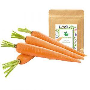 LeeFan Garden Organic Seed 1 500+ Carrot Seeds for Garden Planting, Non-GMO Organic Carrot Seeds, Cheap Widely Adaptable Seeds