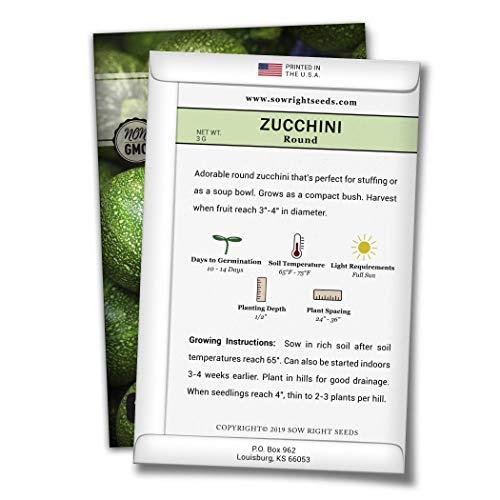 Round Zucchinis and Yellow Straightneck Summer Squash