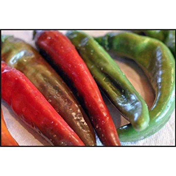 "Isla's Garden Seeds Heirloom Seed 3 ""Anaheim"" Chili Pepper Plant Seeds, 100+ Premium Heirloom Seeds, Chile Hot Peppers, (Isla's Garden Seeds), Non GMO, 85% Germination Rates, Highest Quality"