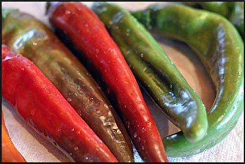 Chile Hot Peppers