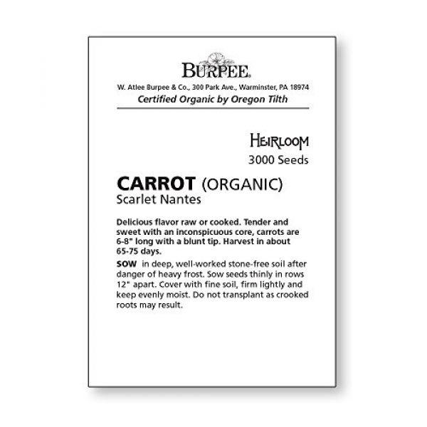 Burpee Organic Seed 2 Burpee Scarlet Nantes Carrot Seeds 3000 seeds