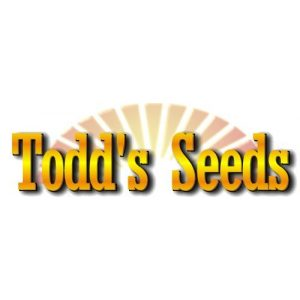 Todd's Seeds Organic Seed 1 Sprouting Broccoli Seeds, One Pound - Todd's Seeds