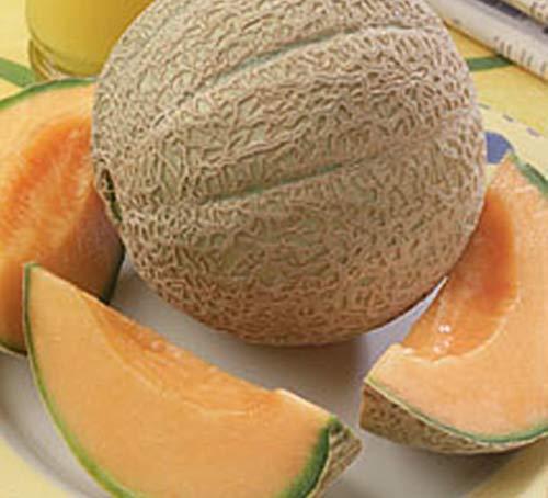 Seed Kingdom  1 Cantaloupe Hearts of Gold Great Heirloom Vegetable Seeds by Seed Kingdom Bulk 2