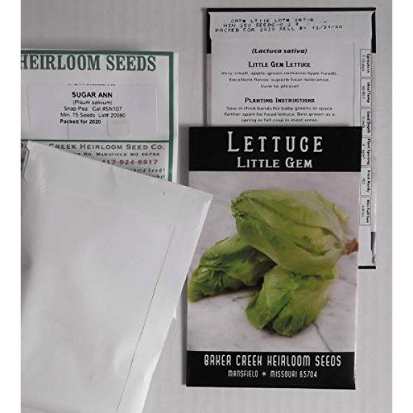 Western Premium Brands Heirloom Seed 5 Baker Creek Heirloom Vegetable Seeds 2020 for Planting Home Garden Variety Pack with Planting Guide Kit - Tomato, Lettuce, Carrot, Peppers, Radish, Peas, Beet, Bush Bean