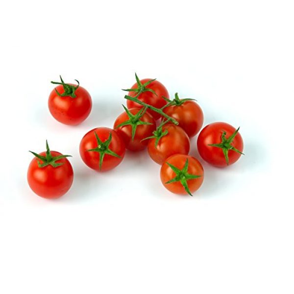Isla's Garden Seeds Organic Seed 1 Large Red Cherry Tomato Seeds, 500+ Premium Heirloom Seeds, Fantastic Addition of Flavor to Your Home Garden!, (Isla's Garden Seeds), 90% Germination Rates, Non GMO Organic, Highest Quality