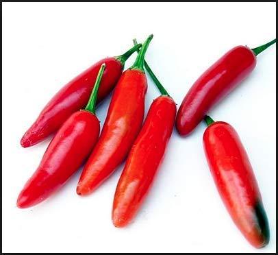 Produces fiery hot pepper plants! - Capsicum annuum - (Isla's Garden Seeds) - Non Gmo Organic