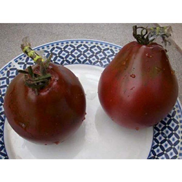 SeedsUA Heirloom Seed 5 Seeds Tomato Black Truffle Vegetable Heirloom Ukraine