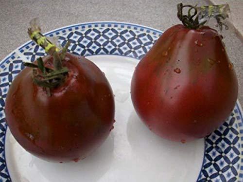SeedsUA  5 Seeds Tomato Black Truffle Vegetable Heirloom Ukraine
