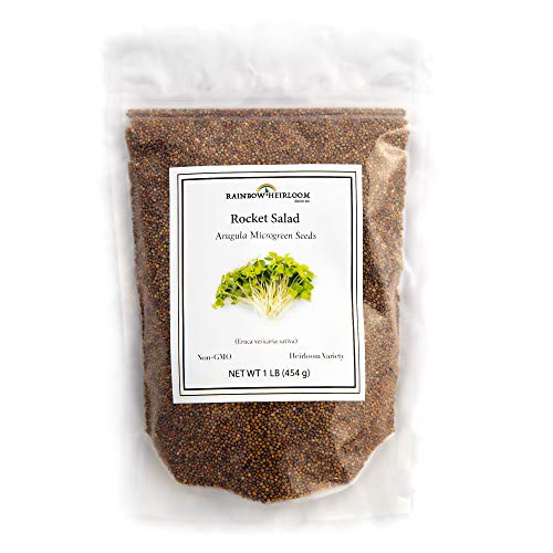 Rainbow Heirloom Seed Co.  1 Arugula Microgreen Seeds Bulk 1 LB Resealable Bag | Spicy & Flavorful Greens | Non GMO Heirloom Seeds | Rocket Salad by Rainbow Heirloom Seed Co.