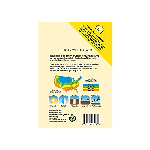 SEEDS OF CHANGE  3 Seeds Of Change 8175 Certified Organic Siberian Wallflower