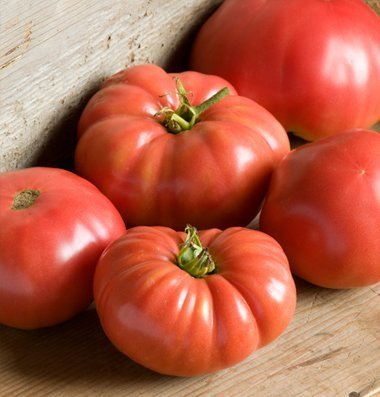 David's Garden Seeds  1 David's Garden Seeds Tomato Beefsteak German Johnson SL3815 (Red) 50 Non-GMO