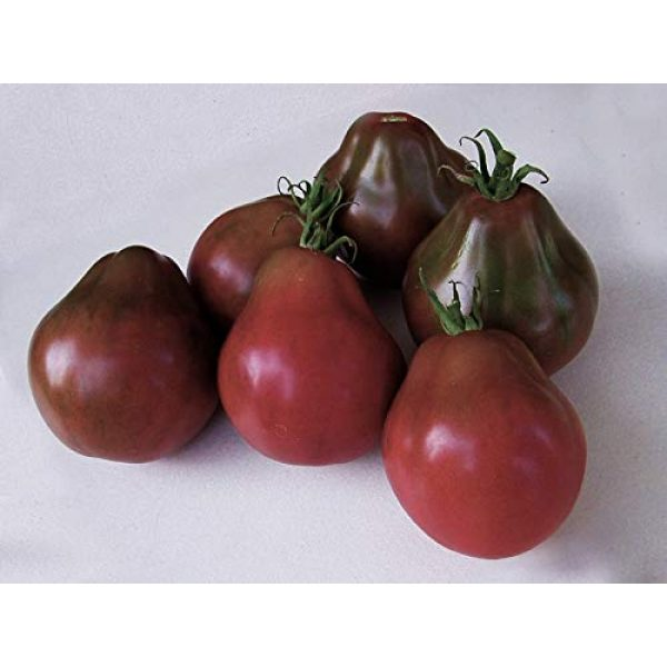 SeedsUA Heirloom Seed 2 Seeds Tomato Black Truffle Vegetable Heirloom Ukraine