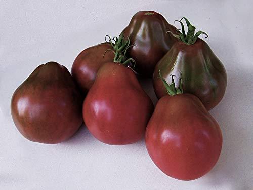 SeedsUA  2 Seeds Tomato Black Truffle Vegetable Heirloom Ukraine