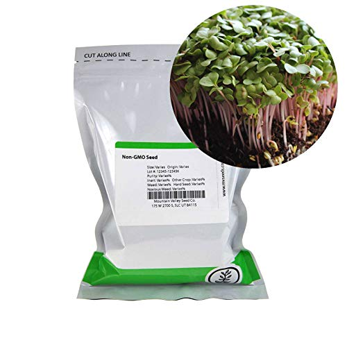 Mountain Valley Seed Company  4 Radish Sprouting Seed - Red Arrow Variety - 1 Lb Seed Pouch - Heirloom Radish Sprouts - Non-GMO Sprouting and Microgreens