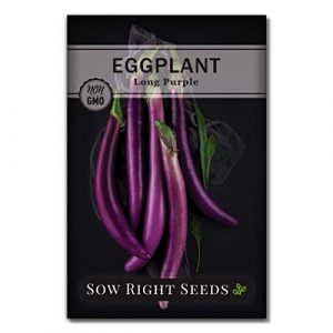 Sow Right Seeds Heirloom Seed 2 Sow Right Seeds - Eggplant Seed Collection for Planting - Black Beauty and Long Eggplant Varieties Non-GMO Heirloom Seeds to Plant an Outdoor Home Vegetable Garden - Great Gardening Gift