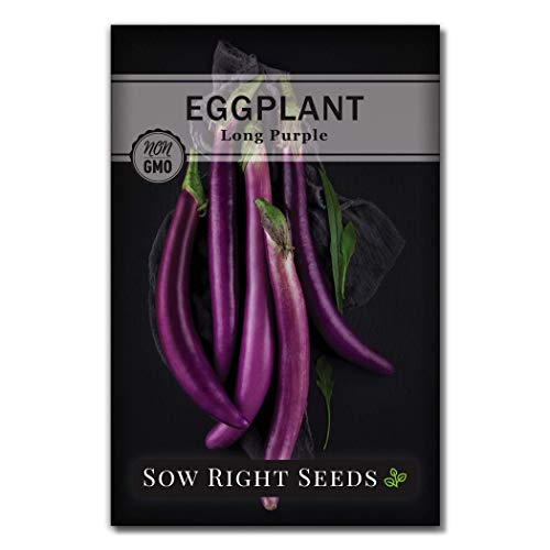 Sow Right Seeds  2 Sow Right Seeds - Eggplant Seed Collection for Planting - Black Beauty and Long Eggplant Varieties Non-GMO Heirloom Seeds to Plant an Outdoor Home Vegetable Garden - Great Gardening Gift