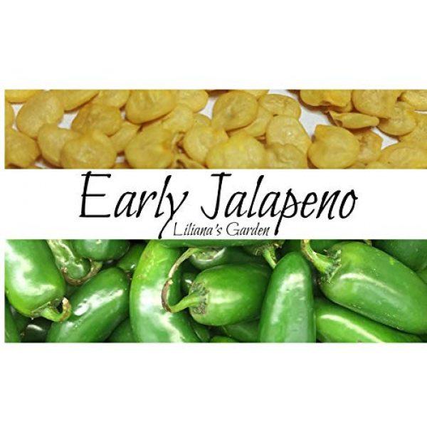 Liliana's Garden Heirloom Seed 1 Jalapeno Seeds - Early Jalapeno - Fastest Growing Jalapeno - Heirloom - Liliana's Garden