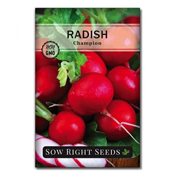 Sow Right Seeds Heirloom Seed 5 Sow Right Seeds - Radish Seed Collection for Planting - Champion, Watermelon, French Breakfast, China Rose, and Minowase (Diakon) Varieties, Non-GMO Heirloom Seed to Plant Home Vegetable Garden