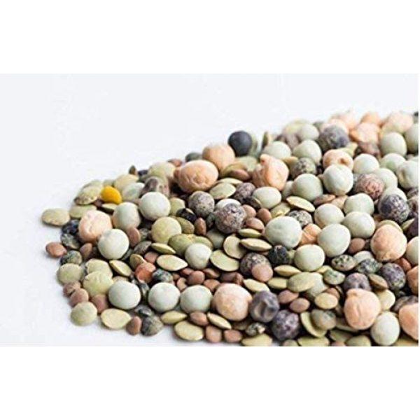 Isla's Garden Seeds Heirloom Seed 5 Rainbow Bean Mix Sprouting Seeds (Contains: Adzuki, Garbanzo, Green Pea, Lentil) 40+ Premium Heirloom Seeds (Isla's Garden Seeds),Non GMO, 85-90% Germination Rates
