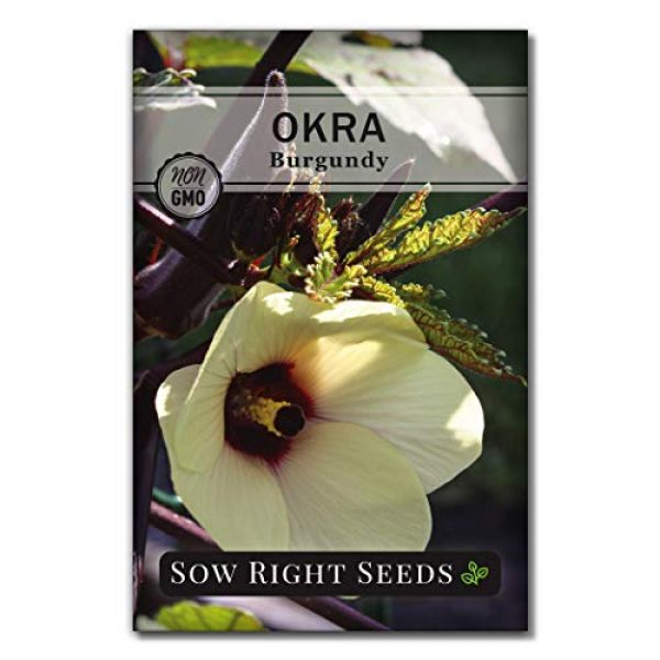 Sow Right Seeds Heirloom Seed 1 Sow Right Seeds - Burgundy Okra Seed for Planting - Non-GMO Heirloom Packet with Instructions to Plant a Home Vegetable Garden - Great Gardening Gift (1)
