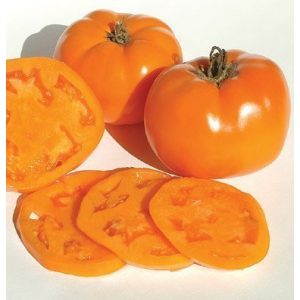 David's Garden Seeds  1 David's Garden Seeds Tomato Beefsteak Valencia 1749 (Orange) 50 Non-GMO