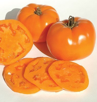 David's Garden Seeds  1 David's Garden Seeds Tomato Beefsteak Valencia 1749 (Orange) 50 Non-GMO