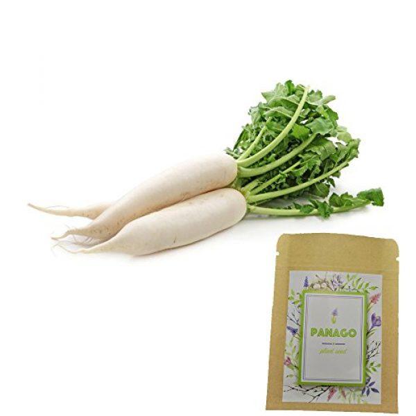 Panago Organic Seed 1 240+ (Daikon) Radish Seeds for Garden Planting, Non-GMO Organic Radish SeedsCheap Widely Adaptable Seeds