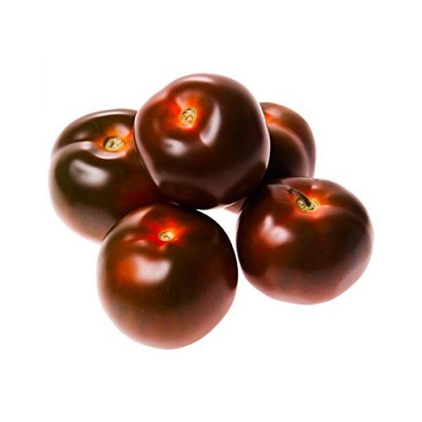 Fertile Ukraine Seeds Heirloom Seed 2 Seeds Cherry Tomato Black Early Vegetable Heirloom Ukraine