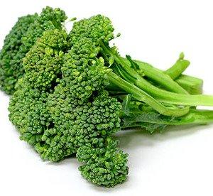 Dirt Goddess Super Seeds  3 Bulk Organic Green Sprouting Calabrese Broccoli (1 Lb)