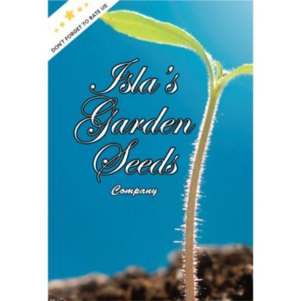 Isla's Garden Seeds Organic Seed 7 Watermelon Radish Seeds, 120+ Premium Heirloom Seeds,Fantastic Addition to Your Home Garden! Top Pick, (Isla's Garden Seeds), Non GMO Organic, 90% Germination Rates, Highest Quality Seeds