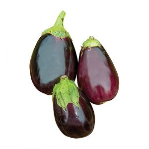 Burpee Organic Seed 1 Burpee Black Beauty (Organic) (Heirloom) Eggplant Seeds 50 seeds