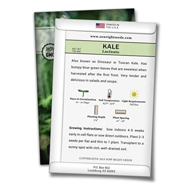 Sow Right Seeds Heirloom Seed 2 Sow Right Seeds - Lacinato Kale Seed for Planting - Non-GMO Heirloom Packet with Instructions to Plant a Home Vegetable Garden, Great Gardening Gift (1)