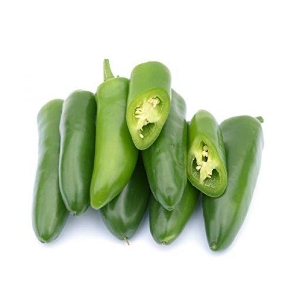 Isla's Garden Seeds Heirloom Seed 1 Jalepeno Tam Hot Peppers Seeds, 150+ Premium Heirloom Seeds!, 99.7% Purity, ON Sale!, (Isla's Garden Seeds), Non GMO Survival Seeds,Highest Quality!