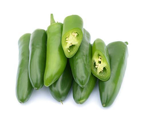 Isla's Garden Seeds  1 Jalepeno Tam Hot Peppers Seeds