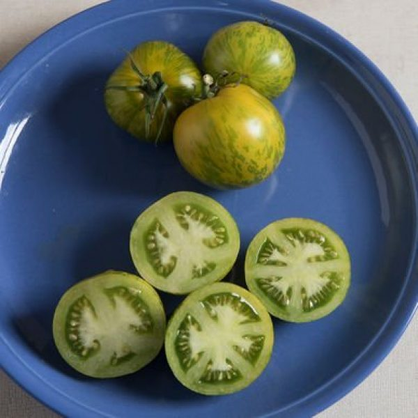 Isla's Garden Seeds Heirloom Seed 5 Green Zebra Tomato Seeds, 200+ Premium Heirloom Seeds, Yummy Delicious! Fun Addition to Your Home Garden!, (Isla's Garden Seeds), Non GMO, 90% Germination Rates, Highest Quality Seeds