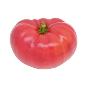 Seed Kingdom Heirloom Seed 1 Tomato Ponderosa Pink Great Heirloom Garden Vegetable by Seed Kingdom Bulk 1/4 Lb Seeds