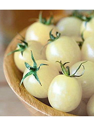SeedsUA  2 Seeds Cherry Tomato Snow White Vegetable Heirloom Ukraine