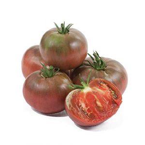 David's Garden Seeds  1 David's Garden Seeds Tomato Beefsteak Cherokee Purple 7533 (Purple) 50 Non-GMO