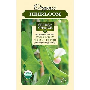 SEEDS OF CHANGE Organic Seed 1 Seeds Of Change 8268 Certified Dwarf Grey Pea, Organic, Seeds, Green