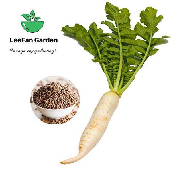 Panago Organic Seed 2 240+ (Daikon) Radish Seeds for Garden Planting, Non-GMO Organic Radish SeedsCheap Widely Adaptable Seeds