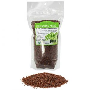 Handy Pantry  1 Organic Radish Sprouting Seeds - 1 Pound Non-GMO Daikon Radish Seeds - Plant & Grow Microgreens Indoors