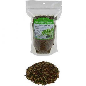 Handy Pantry Organic Seed 1 1 Lb - Handy Pantry 5 Part Salad Sprout Mix - Organic Non-GMO Mixed Seeds - Organic Broccoli Sprouting Seeds, Radish Sprout Seeds, Alfalfa Sprout Seeds, Lentil Seeds, and Mung Bean Seeds for Sprouting